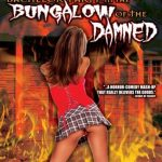 Bachelor party in the bungalow of the dead (Film)