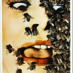 The savage bees (English review)