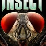 Insect (Film)